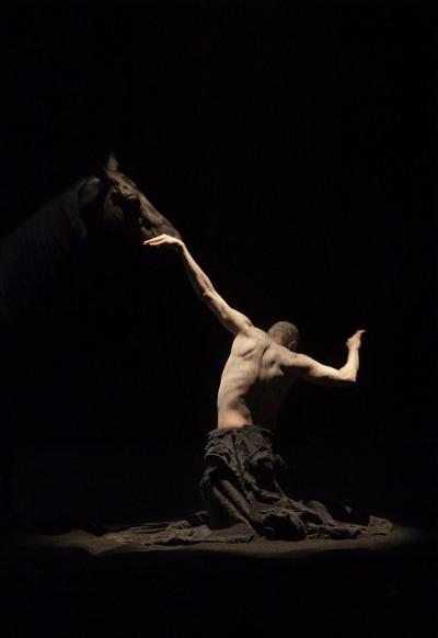 Manifeste Pour la vie d'artiste, de Bartabas dans analyse de livre centaure-nabilboutros22-pr-1mo