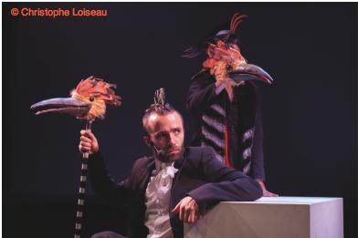 La conférence des oiseaux conf-oiseaux-esnam9-photo-christophe-loiseau