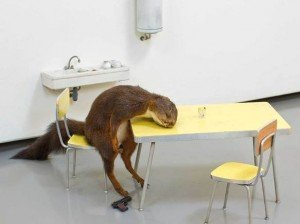 ©Maurizio Cattelan, Bidibidobidiboo, 1996. Tazidermed squirrel, ceramic, Formica, wood, paint and steel. 45 cm. x 60 cm. x 48 cm. Fondazione Sandretto Re Rebaudengo, Turin. Photo, Zeno Zotti.
