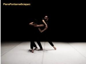 PierrePontianne©cieparc_motifs_HD_5